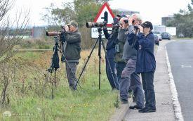 Birdwatchers at East Saltholme, 20th September 2015
