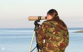 Looking for Surf Scoter at Largo Bay, 18th February 2006