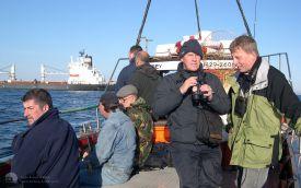 Pelagic off Hartlepool Headland, September 2003